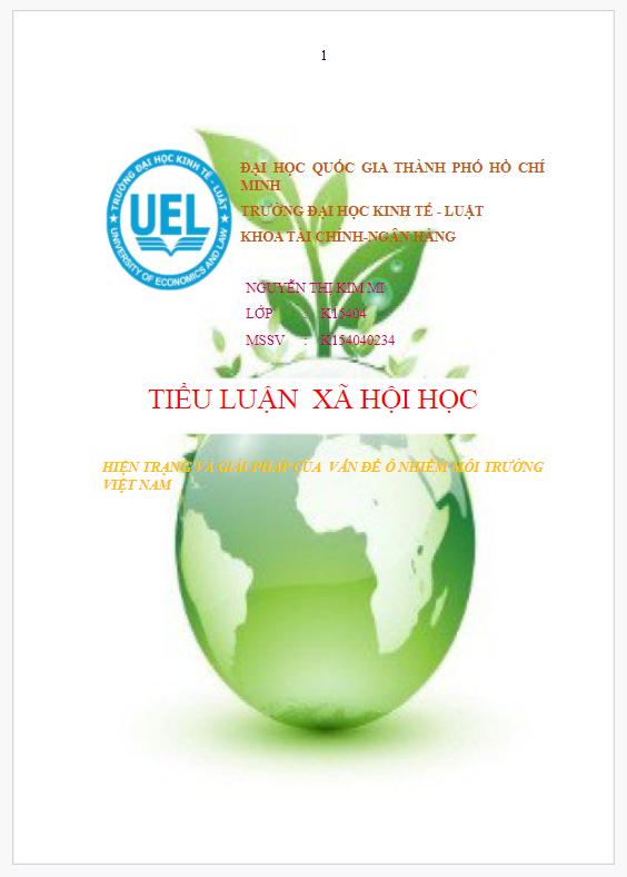 Tiểu luận về thực trạng và giải pháp về ô nhiễm môi trường
